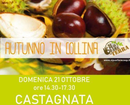 Castagnata