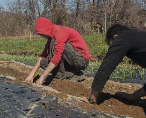 Lavoratori alla Si Può Fare Terra